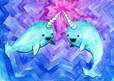The Daily Narwhal