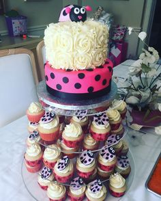 Lady Bug Baby Shower Cake and Cupcakes