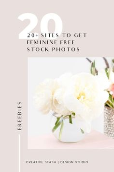 20+ sites to get feminine free styled stock photos