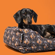 Give your dog somewhere to end the busy day with our range of Personalised Dog Beds. Your dog will have a place to snooze in comfort and style with a bespoke Custom Dog Bed from Dogsy. Personalized Dog Beds, Custom Dog Beds, Comfy Bed, Your Dog, Face, Prints, Dogs, Products, Etsy