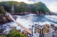 3 Night Garden Route Tour (PE to CPT) in Port Elizabeth. Enjoy a fabulous three night, four day Garden Route tour, taking you from Port Elizabeth to Cape Town in style.Your itinerary:Day Port Elizabeth – Garden Route – Tsitsikamma National Park – Knysna Hiking Spots, Hiking Trails, Port Elizabeth South Africa, Tsitsikamma National Park, Vietnam, Travel Sights, Travel Trip, Travel List, Sunshine Coast