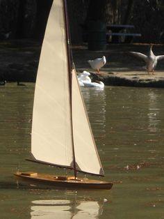 https://flic.kr/p/rw5eAB   Cherrio II M class pond yacht undr sail - Flaming Gnone Studios - all rights reserved