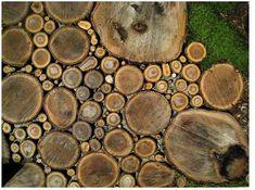 Camino para el jardín con troncos