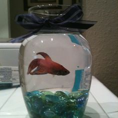 Easy cheap and cute fish tank!   2$ for bowl and rocks at the dollar tree!!