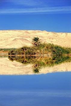 Arab Republic of Egypt, Libyan Desert, Farafra oasis, Egypt