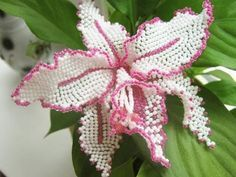 Бисероплетение - Орхидея 1 ч video how to but not in english Beaded Flowers Patterns, Beaded Necklace Patterns, Crochet Flowers, Beading Patterns, Beaded Necklaces, Seed Bead Flowers, French Beaded Flowers, Fuse Beads, Beads And Wire