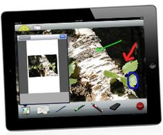 Screenchomp App allows you to share video recordings from your iPad. This is prefect for explaining concepts visually. You could also have students use screen chomp to share their recordings with you or other students. Check it out @ http://www.techsmith.com/labs.html#