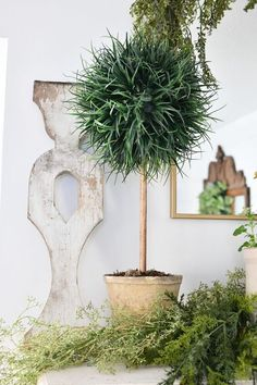 If your anything like me you love the look of topiary trees, but not the high price tag they come with. Here is an easy way to make your own DIY topiary tree with just a few supplies. DIY topiaries are the perfect home decor accent for any room in your home. Once you have mastered this DIY, you will want to make more of these beauties for your home. Check out the full blog article with videos here!Create Your Own Unique Look Boxwood Topiary, Topiary Trees, Topiaries, Diy Candle Holders, Diy Candles, Concrete Projects, Diy Projects, Furniture Projects, Picket Fence Panels