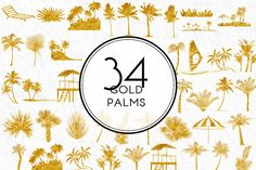 Gold Palms by Kaazuclip on Creative Market
