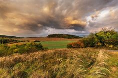 Dense clouds illuminated by the sun and the colorful autumn  Animals photo by tomkriz http://rarme.com/?F9gZi