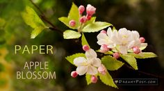 Hope that this paper apple blossom tutorial will warm you up through this heavy snow winter. As usual, with free template and step by step video and pictures included. Leaf Template, Flower Template, Owl Templates, Crown Template, Applique Templates, Applique Patterns, How To Make Paper Flowers, Paper Flowers Craft, Tissue Paper Flowers