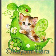 Kittens & Cute Animals