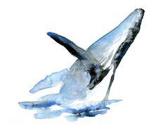 Giclee art d'impression d'une peinture aquarelle de rorqual à bosse. Giclee art imprimé. Peinture animalière. Illustration de la baleine... by Zendrawing on Etsy