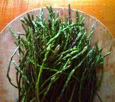 wild asparagus /asparagi selvatici                                                                           spring foraging in Camaiore