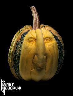 Agatha - pumpkin