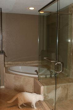 Corner tub and shower bench..