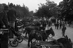 Course de chevaux de carrosse à Campo Grande.