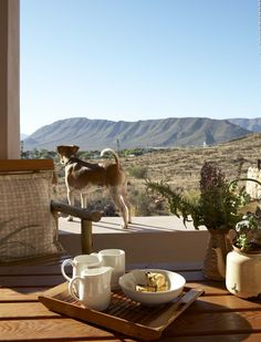 Jock taking in the view from our Karoo View Cottages - South Africa South African Homes, South Afrika, Home Porch, Big Sky Country, Future Travel, Great View, The Good Place, Places To Visit, African Style