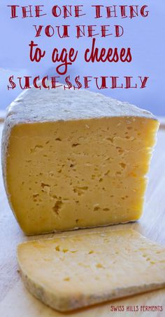 The one thing you need to age cheeses or dry cure meats successfully-Swiss Hills Ferments