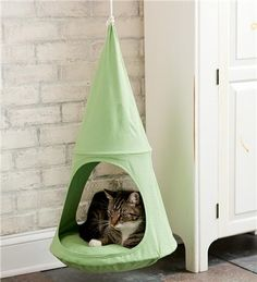I want this for my little kitty! Hanging Cat Cuddle Pod is great if you don't want ugly cat furniture sitting in the corner! Cool Cats, I Love Cats, Crazy Cats, Photo Chat, Cat Room, Pet Furniture, Furniture Movers, Furniture Online, Furniture Ideas