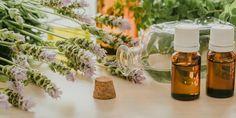 Cool Plants, Homesteading, Essential Oils, Herbs, Table Decorations, Garden, Home Decor, Tips, Garten