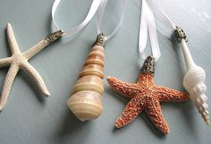 christmas ornaments seashell | seashell ornament beach decor beachgrasscottage on etsy