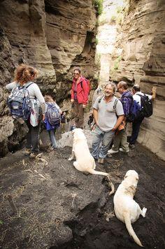 Valle Roja - Vulcano #trekking #hiking #aeolianislands #volcano www.nesos.org