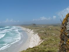 chatham island Chatham Islands, New Zealand, To Go, Heaven, Sky, Spaces, Beach, Water, Outdoor