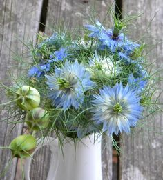 We picked Nigella flowers for the blue in our flowers...so different and I love them!