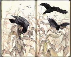Sketchbook  - Andrea Kowch