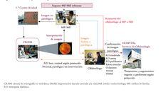 Consenso en el cribado de la retinopatía diabética, redGDPS