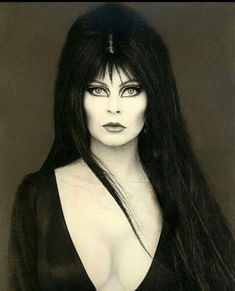 Cassandra Peterson, Bettie Page, Dark Pictures, Stock Pictures, Dark Beauty, Gothic Beauty, Elvira Movies, Vintage Glamour, Gothic Girls