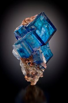 Halite. The color is caused by the radiation of Potasium-40 naturally present within the surrounding sylvite.