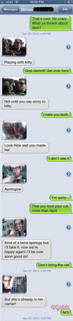 Lawl.. you will love this! Say sorry to kittya??�