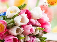 Seeking a affordable online shop that Send Flowers to Delhi at home price so end your journey at buyflower.in, Delhi Online Florist, Delhi Flowers Delivery.