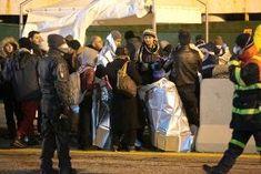 Blog d' informazione curiosità e giornalismo: Onu, un milione di rifugiati dalla Siria da accogl...