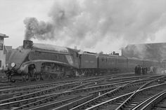 Mallard at Waterloo Station on Photo © National Railway Museum Train Car, Train Tracks, Steam Trains Uk, Waterloo Station, York England, National Railway Museum, Rail Transport, Steam Railway, British Rail
