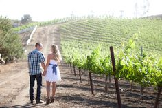 Vineyard Engagement Pictures - PHOTO SOURCE • FAITHFULLY FOCUSED PHOTOGRAPHY