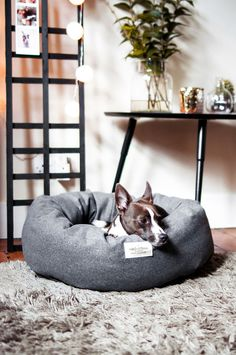 NEW! Your dog will be begging you to sleep on this deep and fluffy donut bed from new London brand Vackertass.