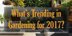 What's #Trending in #Gardening for #2017?