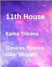 The house of the it means attaining our goals, fulfilling desires, and ambitions. Learn about planets in the house Vedic Astrology, Ambition, Horoscope, Planets, Finance, Stress, Houses, Goals, Learning