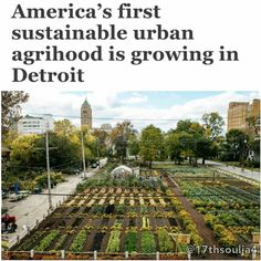@Regrann from @17thsoulja4 -  This week the Michigan Urban Farming Initiative (MUFI) revealed its plans for the first Sustainable Urban Agrihood in the North End.  Wait an agrihood? Its an alternative neighborhood growth model positioning agriculture as the centerpiece of a mixed-use development. There are some agrihoods around the country but in rural areas. This is the first within a city.  MUFIs agrihood spans three acres on Brush Street a few blocks up from East Grand Boulevard. MUFI…
