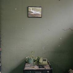 Alec Soth, Dog Days, Bogota