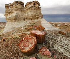 Scenics - Old Highway 180 and Petrified Wood Petrified Forest National Park