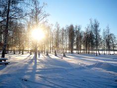 Winter landscape, Kristinehamn December 2010