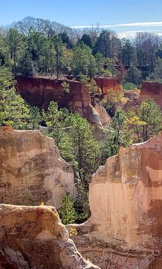 So many beautiful and colorful options for hiking at Providence Canyon. Providence Canyon, Hiking In Georgia, Hiking Spots, Affordable Wall Art, Evergreen, Mother Nature, Parks, Original Artwork, Beautiful Places