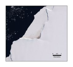 Penguins in Antarctica: Satellite view.  A satellite image showing guano stains in Halley Bay, Antarctica