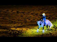 beautiful horse & fun reining song