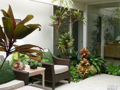 Eichler atrium garden at 428 Nova Albion Way, San Rafael CA - Trulia Atrium Garden, Indoor Garden, Home And Garden, Atrium Ideas, Contemporary Building, Backyard, Patio, Shipping Containers, Sustainable Living