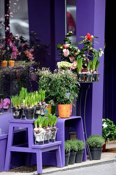 a flower shop in paris Paris In Spring, Prince Purple Rain, Petal Pushers, Paris Shopping, Shop Interior Design, Flower Designs, Shop Windows, Flower Shops, Cake Shop
